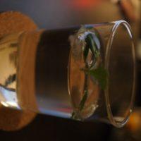 Gin Tonic mit Waldmeisterdeko